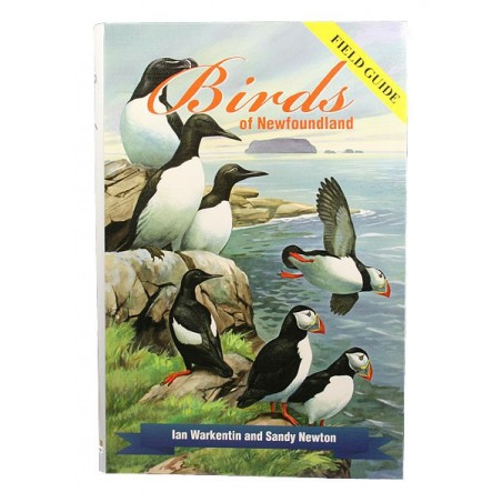 Birds of Newfoundland