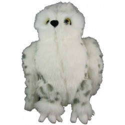 Newfoundland Snowy Owl