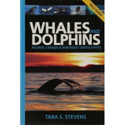 Whales and Dolphins Field Guide