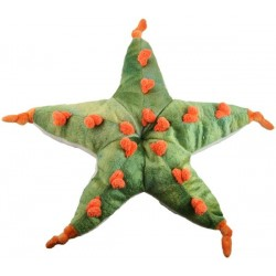 Starfish Stuffed Toy