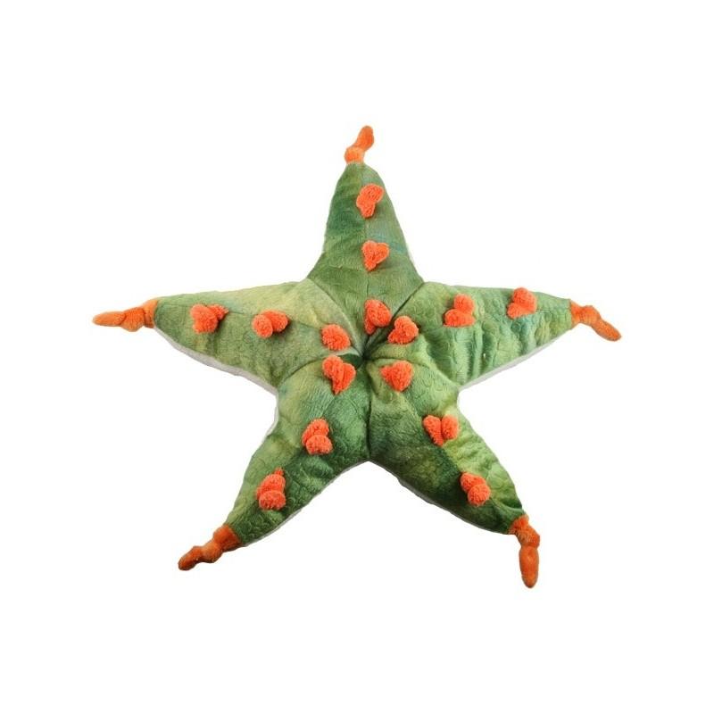 Starfish Stuffed Toy