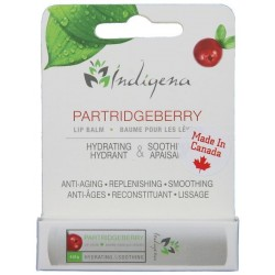 Partridgeberry Lip Balm