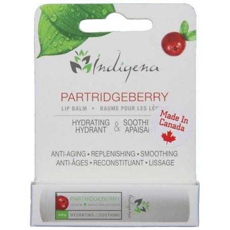 Partridgeberry Lip Balm