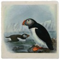 Puffins Marble Trivet