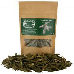 Labrador Tea 10g