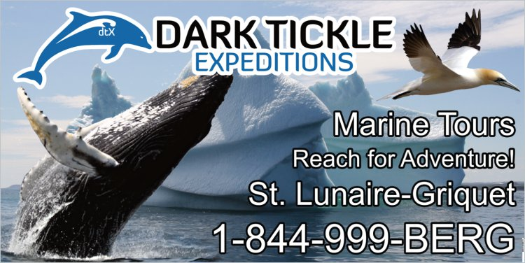 Dark Tickle Expeditions